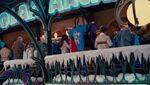 The Polar Arcadia Store