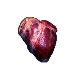 The Heart of Onaga