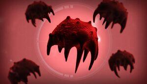 The Necroa Virus