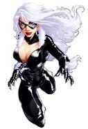 Czarny Kot (Marvel)4