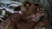 Scrappy Rex Evil Grin