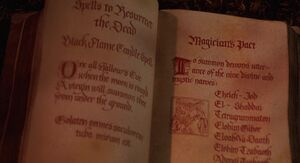 Pages of the Spellbook