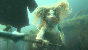 Mermaid Harry Potter