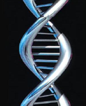 The Progenitor Virus