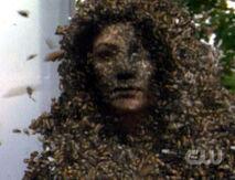 Bug-Lady-Gloria-reaper-376416 300 230