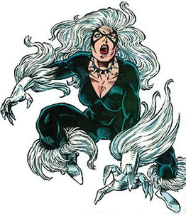 Black-Cat-Marvel-Comics-Felicia-Hardy-Spider-Man-3-h