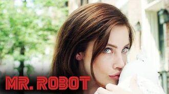 Mrs. Wellick Mr. Robot