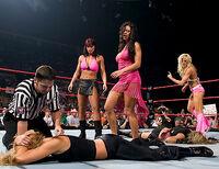 WWETorrieWilson15