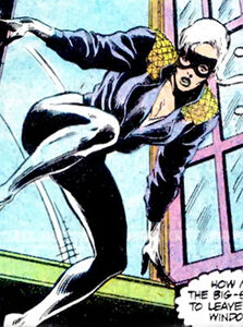 Black-Cat-Marvel-Comics-Felicia-Hardy-Spider-Man-2-f