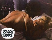 Soh anouska hempel black snake 11