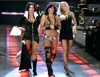 WWETorrieWilson16