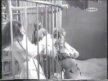 Mrs Peel pulling the panic striken receptionist through the bars (Yolande Turner with Diana Rigg)