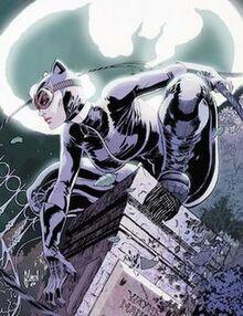 250px-CatwomanVol4