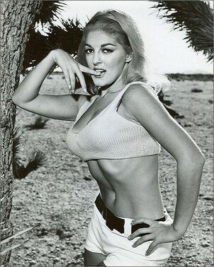 Big-1966-lori-williams-hotpants-pussycat