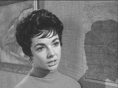 Sue Hammond (Sheila Connolly)