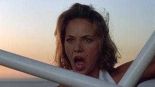 Michelle Rodham Huddleston (played by Brenda Bakke) Hot Shots 2 118