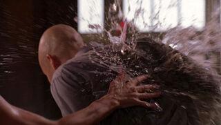 Desiree Atkins (played by Krista Allen) Smallville 88