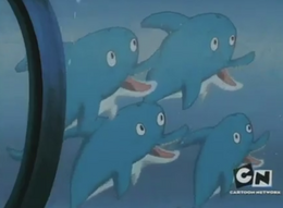 Ghastly's Dolphins