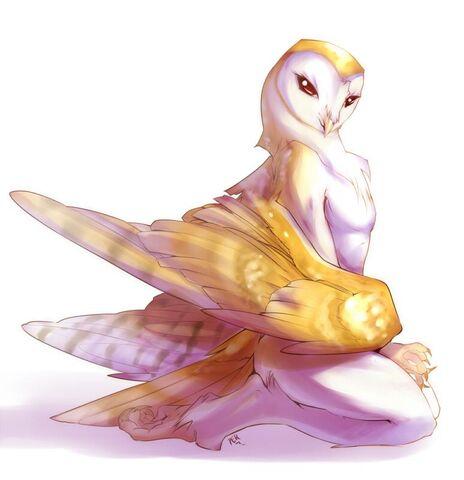 File:Owling.jpg