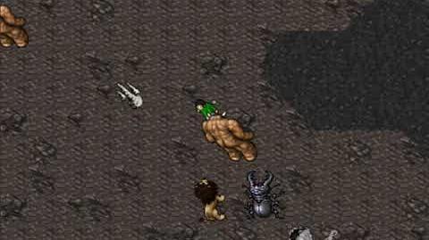 Friendship Amulet Quest