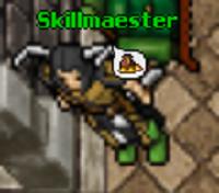 Skillmaester