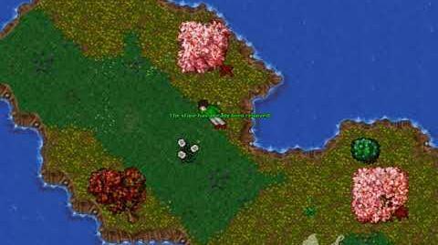5% Damage Reduction Quest
