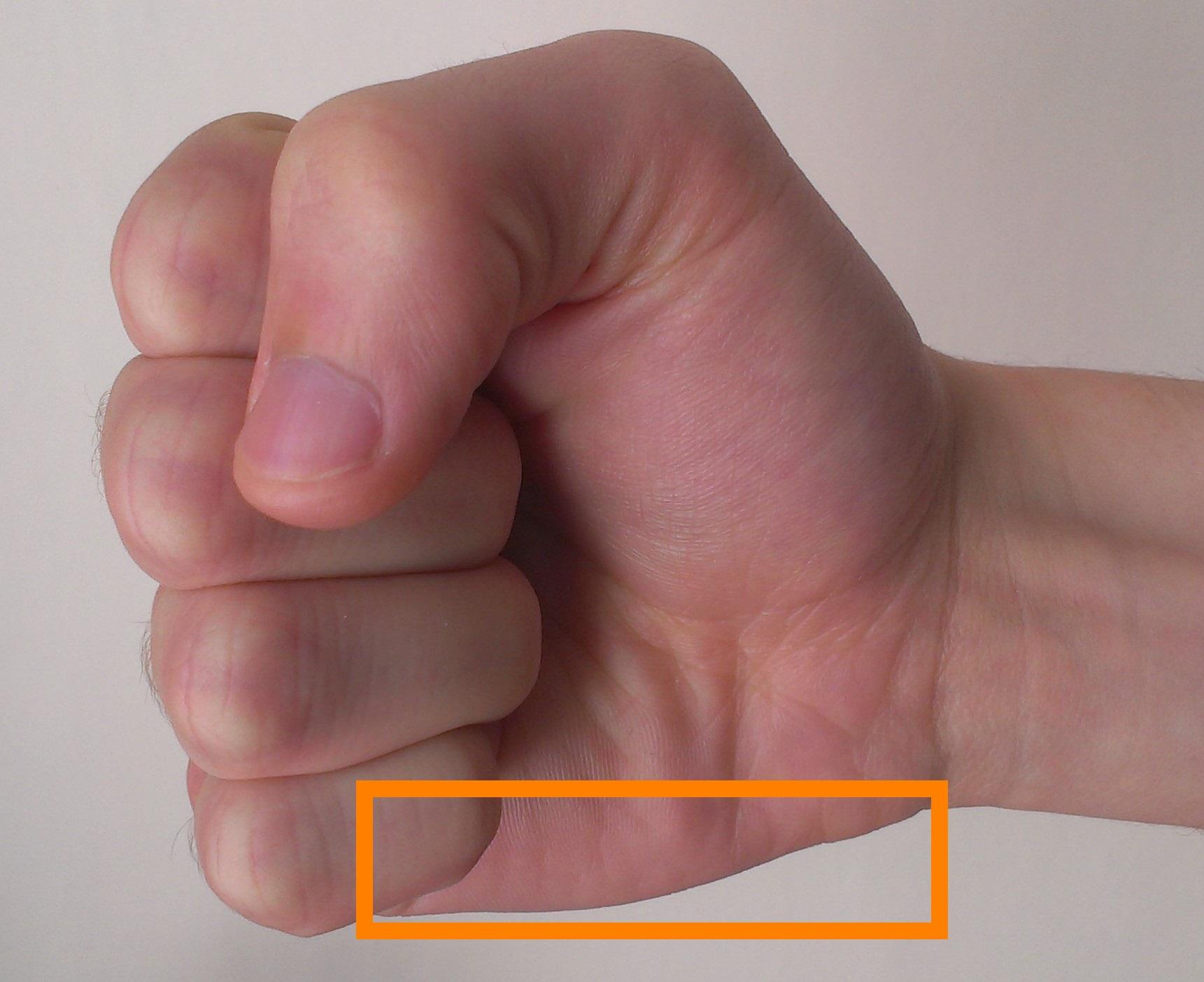 Hammer Fist Evolutionary Self Protection Wiki Fandom