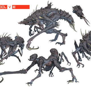 Evolve Gorgon Stages