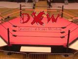 Destruction of Xtreme Wrestling
