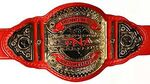TNA Knockouts Tag Team Championship