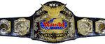 DXW Mixed Tag Team Championship V2