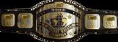 IW Belt