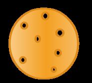 CrackerNEWER-0