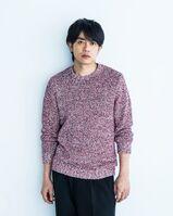 Aoyagi Sho (Gekidan EXILE)