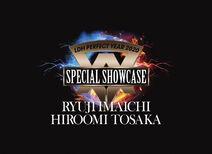 LDH PERFECT YEAR 2020 SPECIAL SHOWCASE RYUJI IMAICHI HIROOMI TOSAKA cover