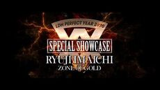 "LDH PERFECT YEAR 2020 SPECIAL SHOWCASE RYUJI IMAICHI ""EXCLUSIVE SELECTION"""
