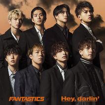 FANTASTICS - Hey, darlin' CD only cover