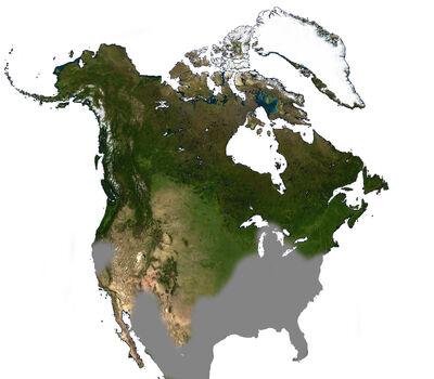 Opossum North America Range