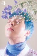 Blooming Days Xiumin 1