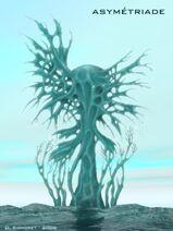 Solaris-Asymmetriade