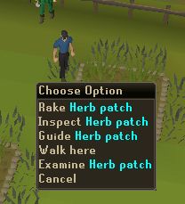 Herb patch