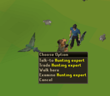 Trade hunting expert