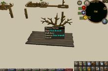 Climb tree branch