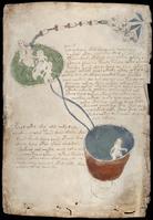 V.M. Page 4