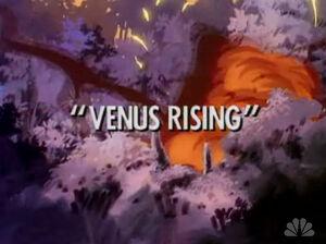 Venus Rising titlecard