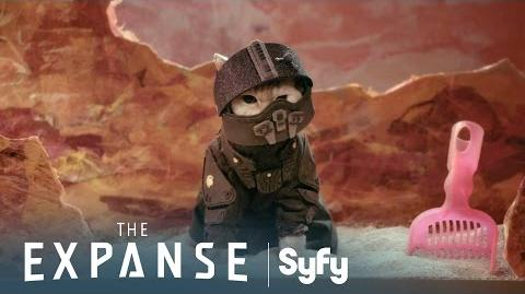 THE EXPANSE Season 1 Recap With Cats (Recat!)