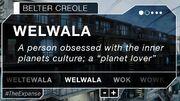 Welwala-Belter Creole panel
