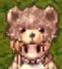 Teddybear Hat