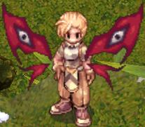 Magnus Wings