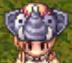 Elephant Hat-0
